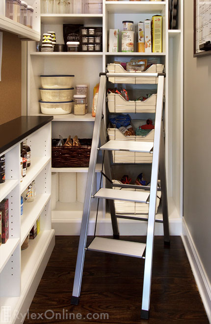Slim Line Pantry Ladder Fold Up Closet Ladder New City Ny